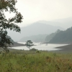 पेरियार राष्ट्रीय उद्यान